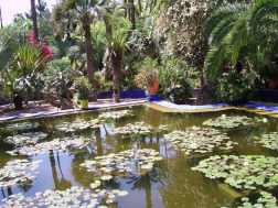 J9 15 jardin Majorelle