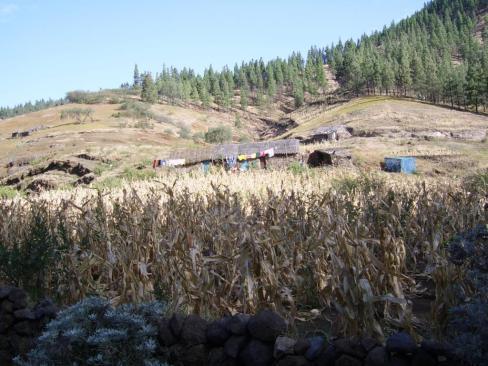 Une ferme Agua das Caldeiras