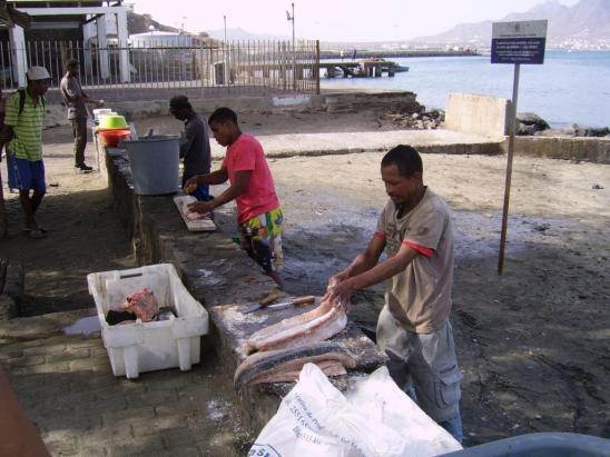 La pêche à Mindelo